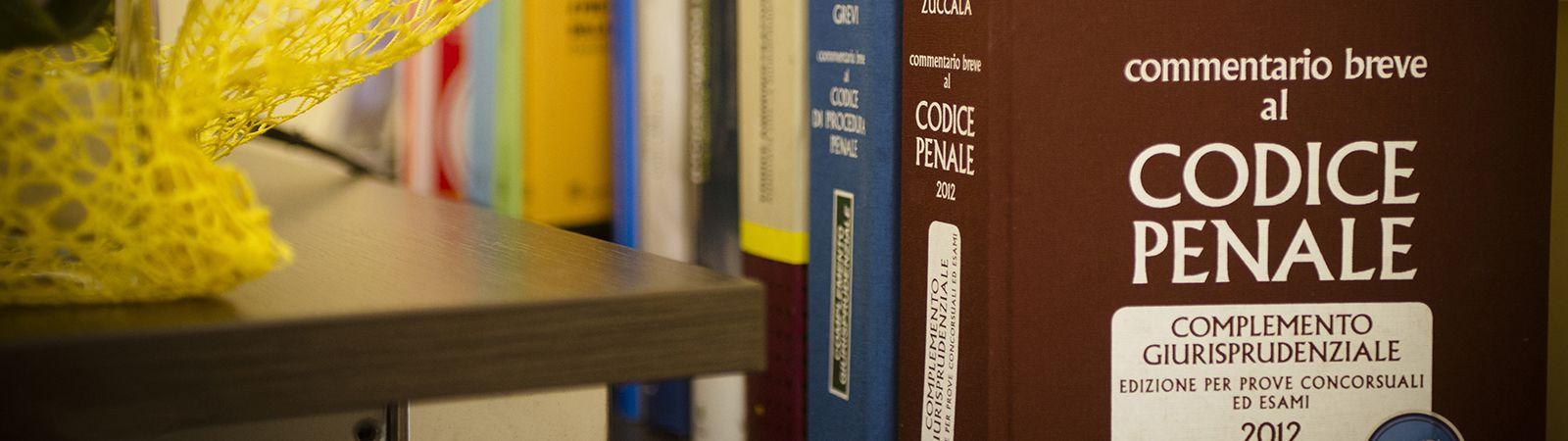 <span>Difesa Penale e Civile del Lavoro</span> 1